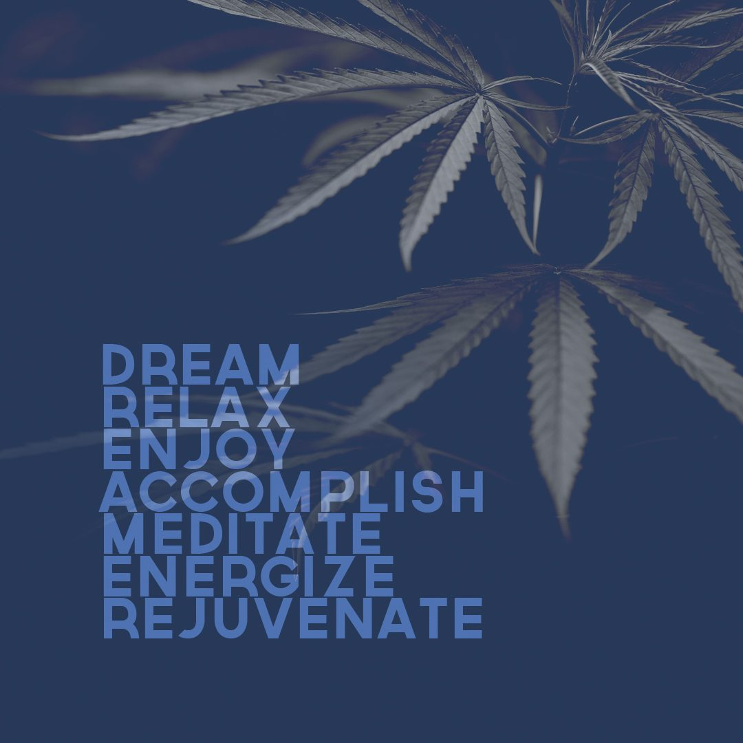 DIF Design Project - Dreamer Cannabis logo and brand identity